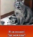 avtomastersu1 аватар