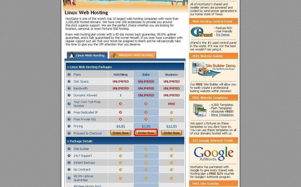 самый дешевый домен и хостинг